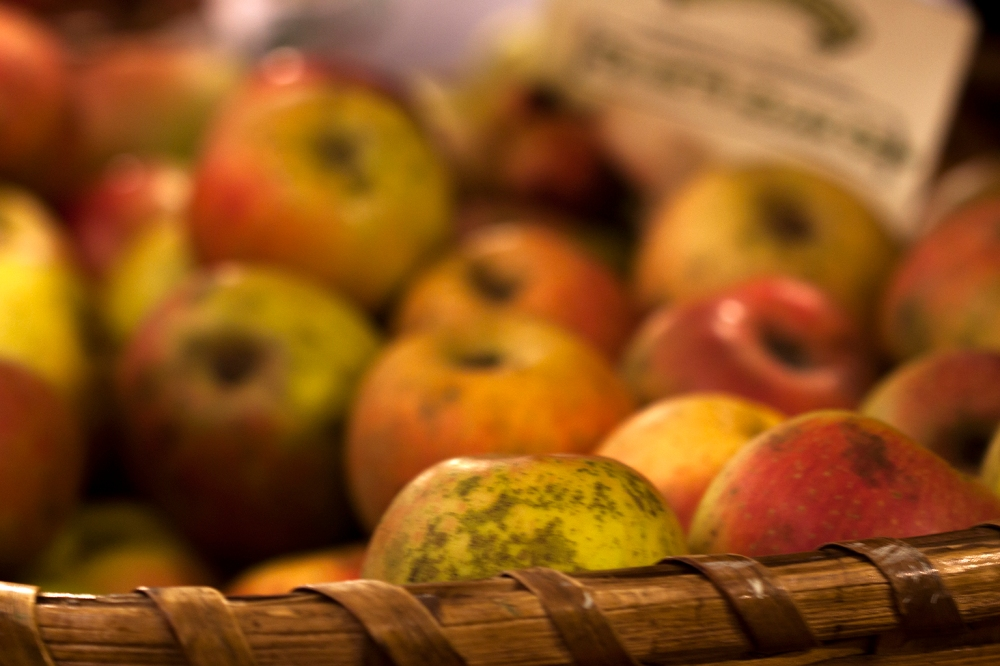 manzanas_0365-1