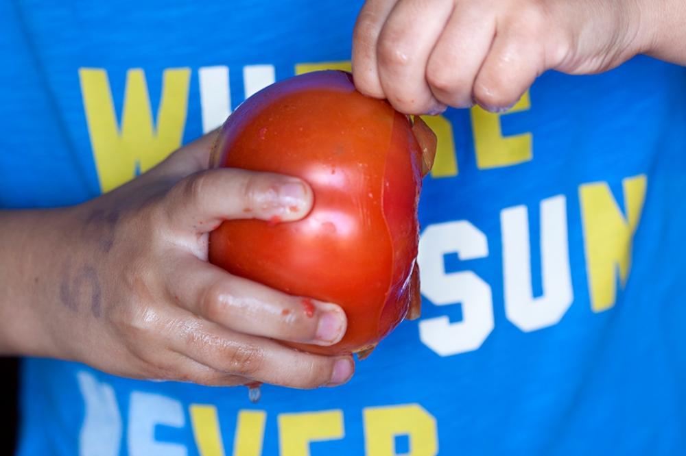 Con los tomates escaldados, quitarles la piel es muy sencillo.
